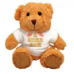 Personalised-Teddy-Bear-Cuddly-Icon